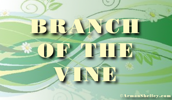 I am...a Branch of the Vine