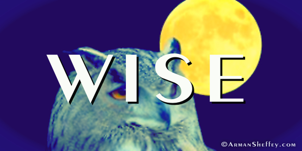 I am... Wise