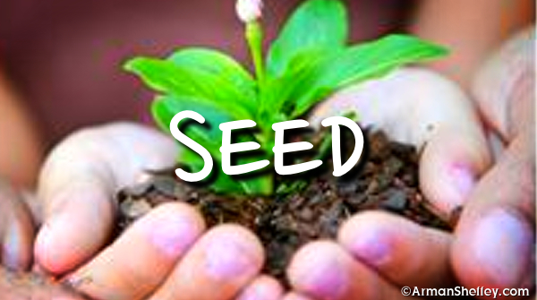 I am...Seed